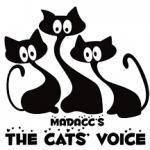 cats voice